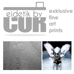 exklusive fine art prints